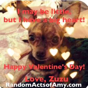 And finally, a special valentine message from the adorable Zuzu.